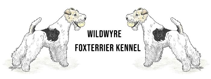Wildwyre Foxterrier Kennel Logo